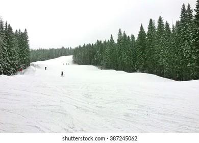 Alpinists on a piste