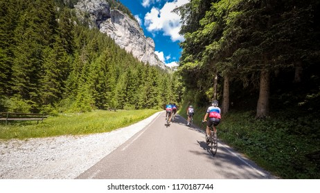 Alps, dolomites. Group of cyclists along a mountain road in the woods