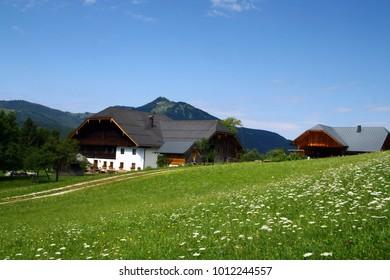 Alps farm on the meadow
