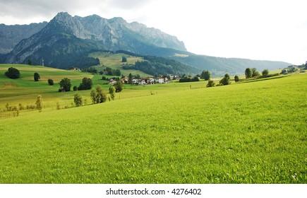 alps grass valley