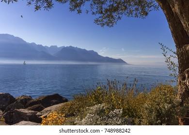 Alps mountains upon Geneva lake, Montreux, Switzerland