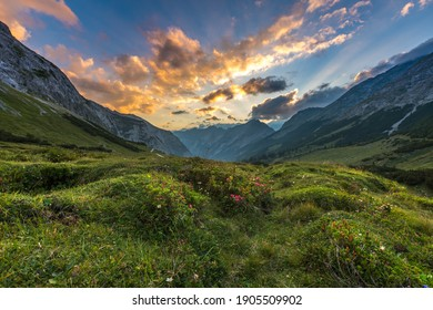 Alps panorama sommer meadow austria karwendel at sunset colored sky. - Shutterstock ID 1905509902