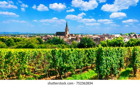 """Alsace region of France - famous """"Vine route"""" . beautiful vineyards and traditional villges"""