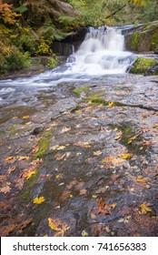 Alsea falls in the Oregon coast range between Eugene and Corvallis.
