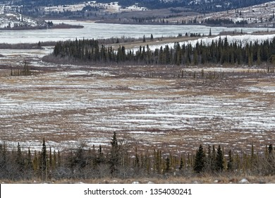 Alsek Valley desolated landscape in Kluane National Park, Yukon