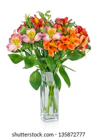 Alstroemeria flowers in  vase isolated on white
