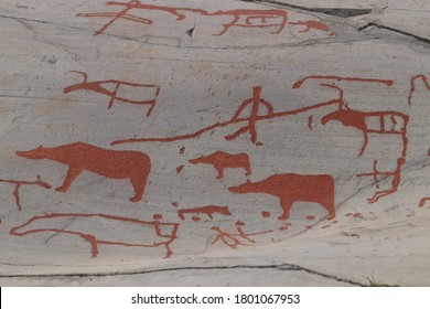 ALTA, TROMS OG FINNMARK COUNTY / NORWAY - AUGUST 03 2020: Rock carvings at Alta. Bears, reindeers and human.  Carvings were made by the neolithic and early metal age people