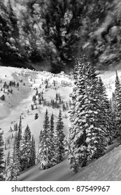 Alta Winter Black & White
