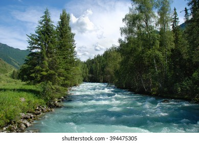 Altai, mountain river Kucherla, forest landscape, Altai, Russia