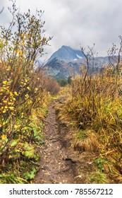 Altai nature. Trail near Multinskoe Lakes. Autumn landscape