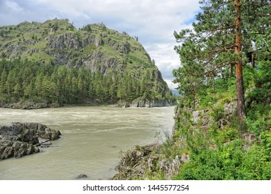 ALTAI, RUSSIA - Picturesque view on the mount Mramornaya (Marble) and the mountain river Katun framed by a pine tree. The place is located near the confluence in Katun of its inflow, the Chemal River.
