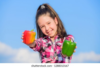 Alternative decision concept. Kid hold ripe pepper harvest. Child presenting kinds of pepper. Fall harvest homegrown vegetables. Choose which. Kid girl hold red and green peppers sky background.