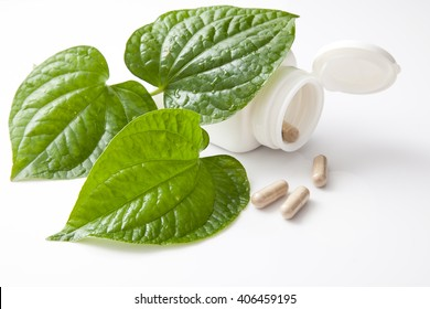 alternative health care concept. idea with herbal capsules, green leaf and container on white background