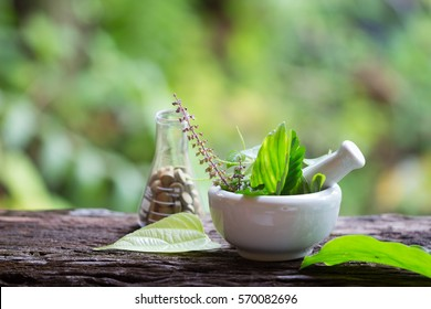 Alternative health care fresh herbal plant  and herbal pill in Erlenmeyer flask with mortar on old rustic wooden background over green bokeh background