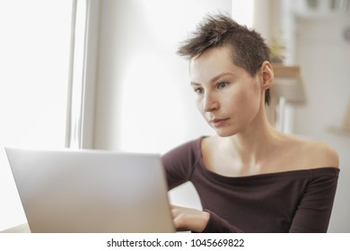 alternative looking girl works at notebook computer in cafe by window solving problems online. Young woman freelancer types netbook laptop pc remote work short haircut punk modern style hipster
