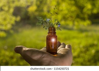 Alternative medicine - bottles & hand. Fresh herbs - Natural remedies.
