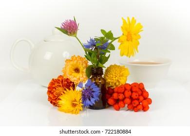 alternative medicine concept - herbal tea with teapot and ingredients