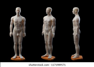 Alternative medicine and east asian healing methods concept with multiple angle view of full size acupuncture dummy model isolated on black background with clip path cut out