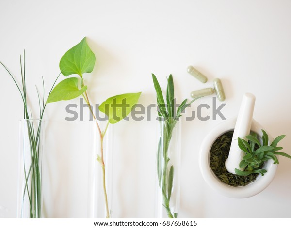 alternative medicine herb , mortar, laboratory glassware, plant in tube, flower , on white background.