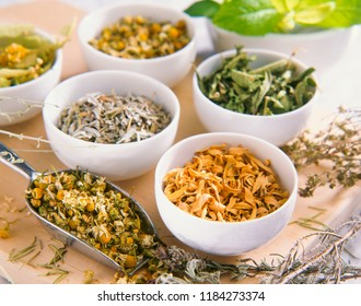 Alternative Medicine. Herbal Therapy. Dried healing herbs.Selective focus.