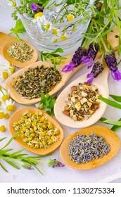 Alternative Medicine. Herbal Therapy. Healing herbs in wooden spoons.