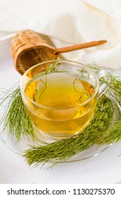 Alternative Medicine. Herbal Therapy. Horsetail infusion in glass cup. White background.