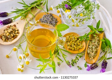Alternative Medicine. Herbal Therapy. Rosemary, mint, chamomile, thyme, melissa, lavender and lemon verbena. Infusion in glass cup.