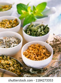 Alternative Medicine. Herbal Therapy. Several healing herbs in bowls. White background.