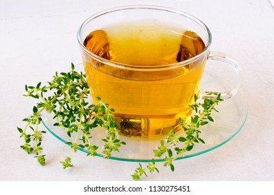 Alternative Medicine. Herbal Therapy. Thyme infusion in glass cup. White background.