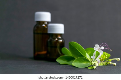 Alternative medicine -  Homeopathic substance bottle with leaf and white flower on black background