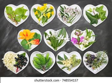Alternative Medicine with medicinal plants 5