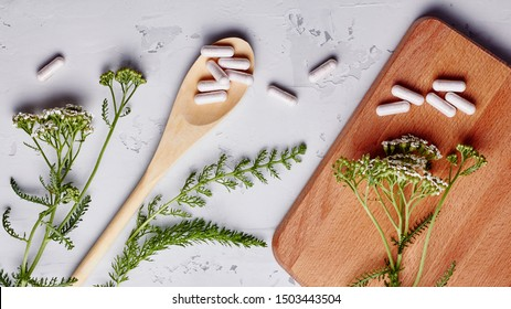 Alternative medicine, naturopath and dietary supplement. Herbal remedy in capsules and plants over grey background. Top view, flat lay