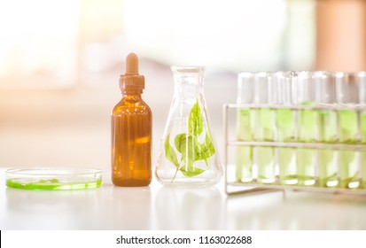 Alternative organic herbal drug and chemical medicine, Doctor mixing extraction for new pharmacy formulation,Innovative technologies in science and medicine.