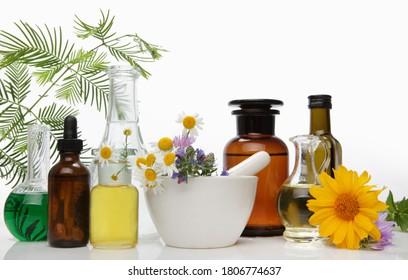 Alternative pharmaceuticals, fresh chamomile flowers on white background.