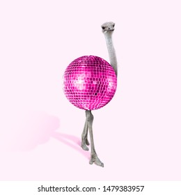 An alternative view of ostrich as a pink bright disco ball on coral background. Negative space to insert your text. Modern design. Contemporary art collage. Concept of fashion, animals, beauty.