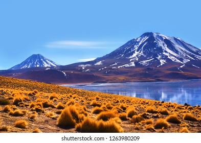 Altiplanic Laggons in Atacama, Chile