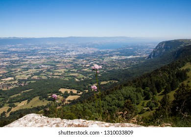 Altitude Panorama over Lake Leman and French  Haute Savoie Valley on a Sunny Summer Day