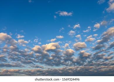 Altocumulus floccus clouds in the blue sky