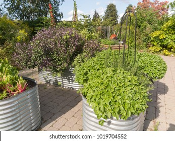 Aluminum planters with herbs