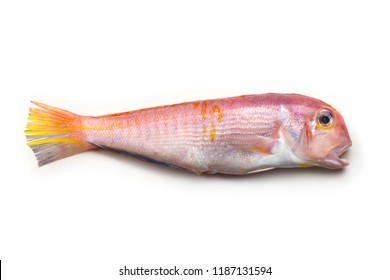 Amadai Tilefish (Branchiostegus) Isolated on white. Fish used for Sushi and Japanese cuisine.