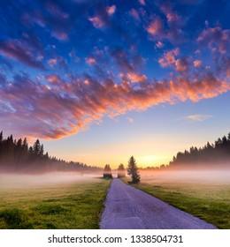 Amaizing sunrise view on Durmitor mountains, National Park, Mediterranean, village Zabljak,  Montenegro, Balkans, Europe. The road between the trees. Bright summer view on alpine valley.