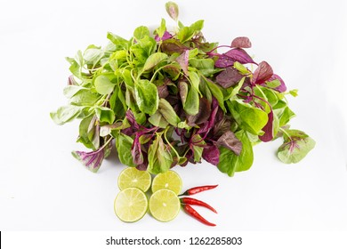 Amaranthus retroflexus also called red-root amaranth, common amaranth, pigweed amaranth, common tumbleweed isolated on white background. Chili, lemon are used to decorate.