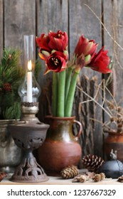 Amaryllis in Clay Pot, Burning Candle, Rustic Oil Lamp, Vintage Style