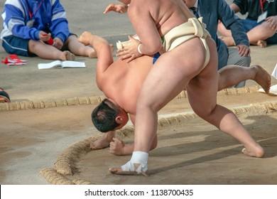 Amateur sumo wrestler