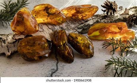 Amazing ancient amber stones of different colors and forms on a birch bark on a gray plastered surface. Amber texture, material for jewelers, stone healing, alternative medicine.