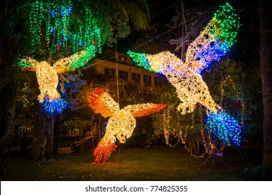 The amazing Artist's Lights (Luci d'Artista) in Salerno during Christmas time. Campania, Italy.