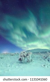 Amazing authentic northern lights dancing in a starry sky above snow covered landscape
