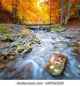 Amazing Autumn in forest - colorful trees, small wooden bridge and fast river with stones, fall landscape