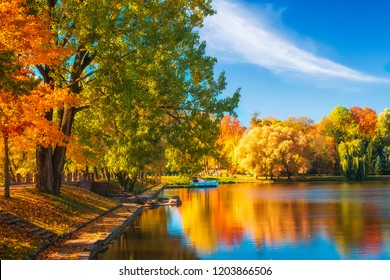 Amazing autumn landscape on clear sunny day. Colorful trees reflected in water surface of lake in park. Beautiful outdoor autumnal park. Fall. Nesvizh park with colored trees on lake shore