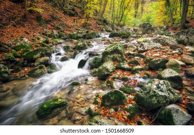 Amazing Autumn landscape. River in colorful autumn park with yellow, orange, red, green leaves. Golden colors in the mountain forest with a small stream. Season specific.